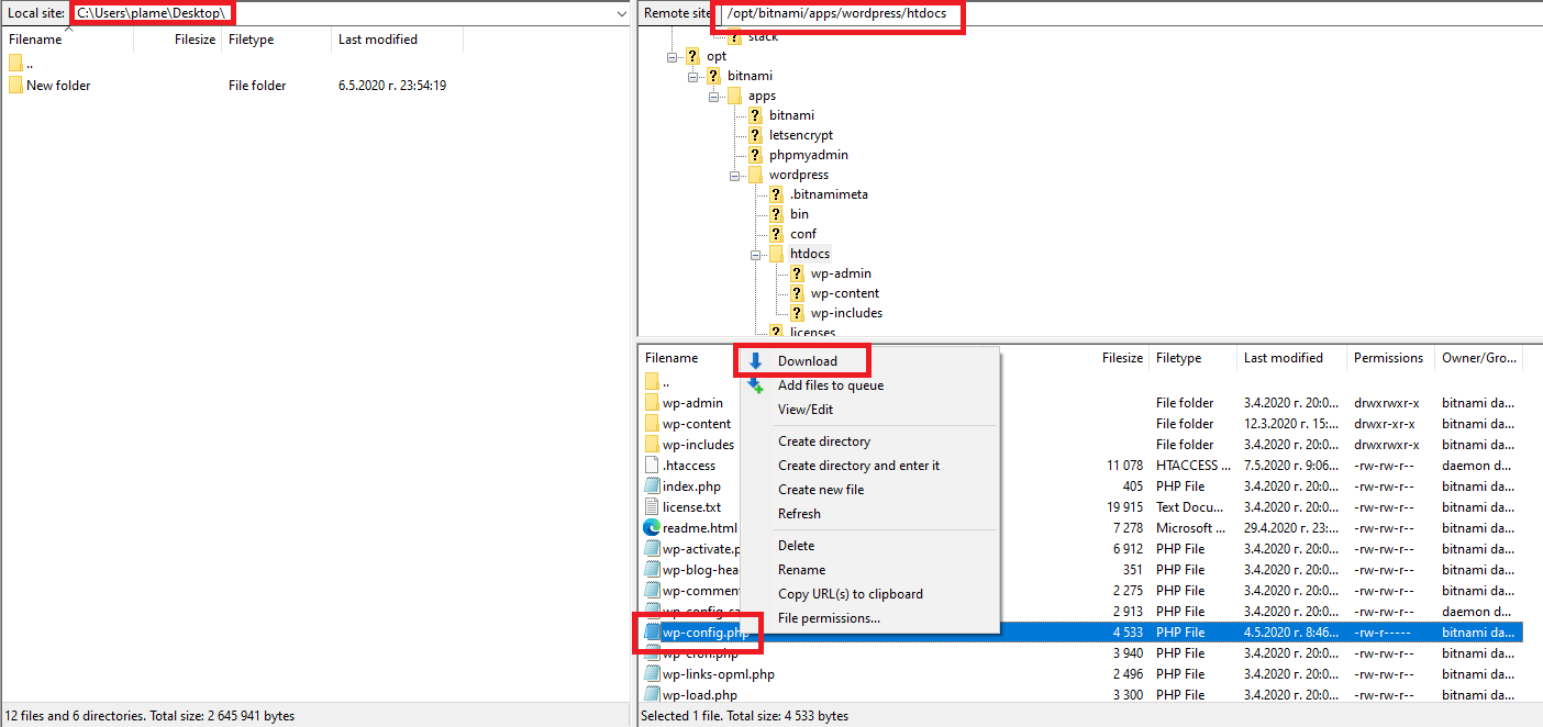 Download wp-config File